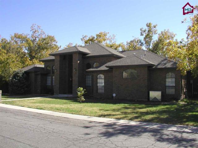 144 Los Nogales Drive, Las Cruces, NM 88005 (MLS #1703004) :: Steinborn & Associates Real Estate