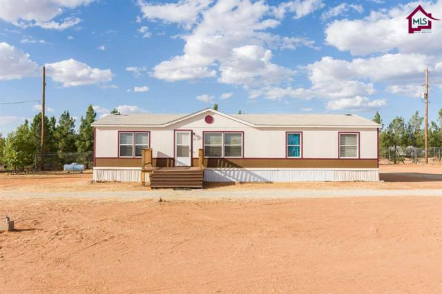 7539 Shoestring Ranch Road, Las Cruces, NM 88012 (MLS #1703006) :: Steinborn & Associates Real Estate
