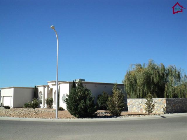 4573 Calle De Nubes, Las Cruces, NM 88012 (MLS #1703007) :: Steinborn & Associates Real Estate