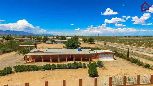 664 Rocky Mountain Rd, Chaparral, NM 88081 (MLS #1703014) :: Steinborn & Associates Real Estate