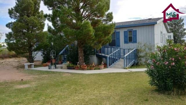 708 Sunny Sands Road, Chaparral, NM 88081 (MLS #1703275) :: Steinborn & Associates Real Estate