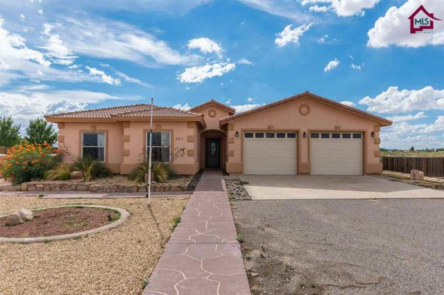 607 Sunny Sands Road, Chaparral, NM 88081 (MLS #1703278) :: Steinborn & Associates Real Estate