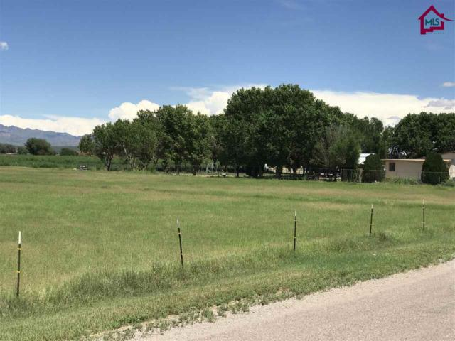 0 E Afton Road, La Mesa, NM 88044 (MLS #1703298) :: Steinborn & Associates Real Estate