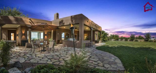 2551 Mesilla Hills Drive, Las Cruces, NM 88005 (MLS #1703303) :: Steinborn & Associates Real Estate