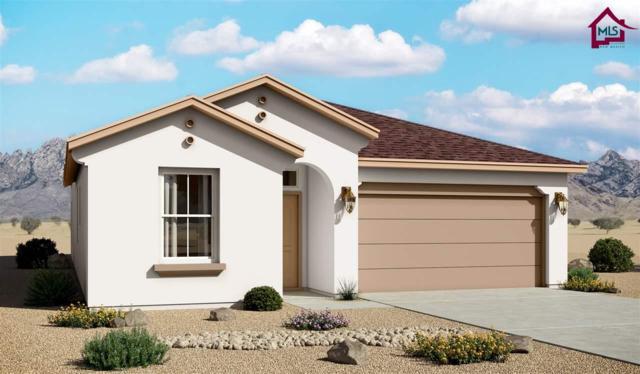 4858 Villeta Ave, Las Cruces, NM 88012 (MLS #1703348) :: Steinborn & Associates Real Estate
