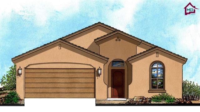 1326 Bison Spring Drive, Las Cruces, NM 88012 (MLS #1703349) :: Steinborn & Associates Real Estate
