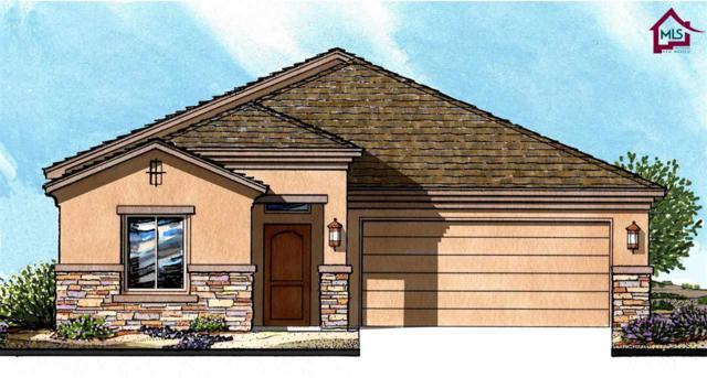 1330 Bison Spring Drive, Las Cruces, NM 88012 (MLS #1703350) :: Steinborn & Associates Real Estate