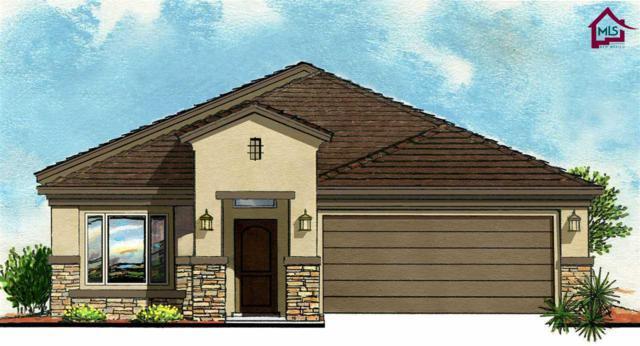 1309 Bison Spring Drive, Las Cruces, NM 88012 (MLS #1703351) :: Steinborn & Associates Real Estate