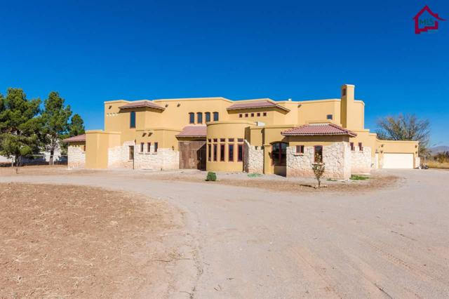 25 Las Colmenas Rd, San Miguel, NM 88058 (MLS #1703381) :: Steinborn & Associates Real Estate