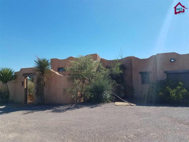 4061 Sotol Drive, Las Cruces, NM 88011 (MLS #1703383) :: Steinborn & Associates Real Estate