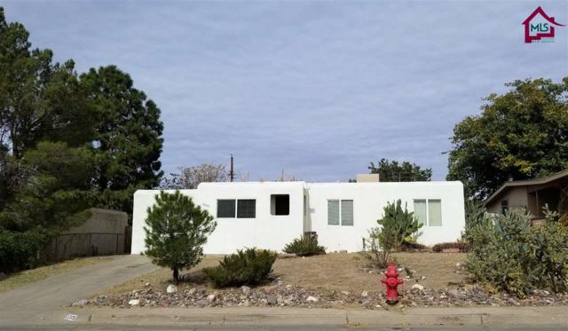 2205 Skyway Drive, Las Cruces, NM 88001 (MLS #1703387) :: Steinborn & Associates Real Estate