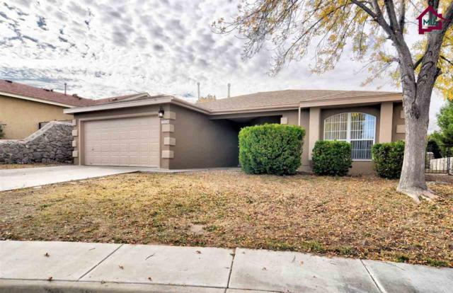 710 Scenic View Drive, Las Cruces, NM 88001 (MLS #1703412) :: Steinborn & Associates Real Estate