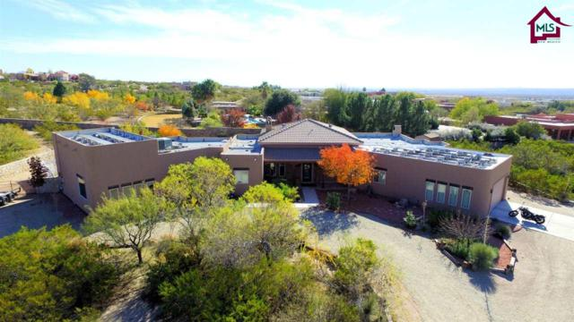 5050 Canyon Court, Las Cruces, NM 88011 (MLS #1703413) :: Steinborn & Associates Real Estate