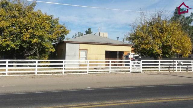 206 W Union Avenue, Las Cruces, NM 88004 (MLS #1703416) :: Steinborn & Associates Real Estate