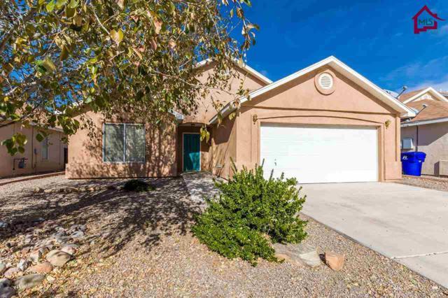 2988 Onate Road, Las Cruces, NM 88007 (MLS #1703419) :: Steinborn & Associates Real Estate