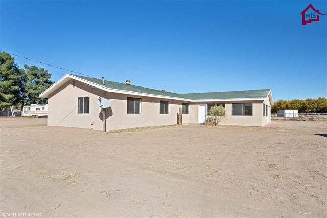 288 Baca Road, Las Cruces, NM 88007 (MLS #1703428) :: Steinborn & Associates Real Estate