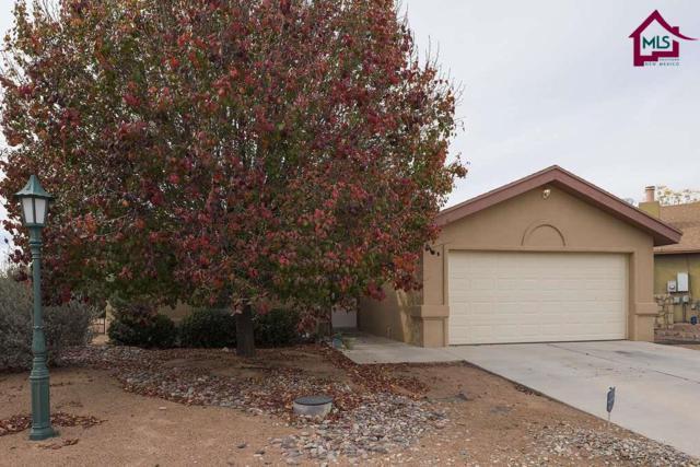 5418 Alden Drive, Santa Teresa, NM 88008 (MLS #1703435) :: Steinborn & Associates Real Estate
