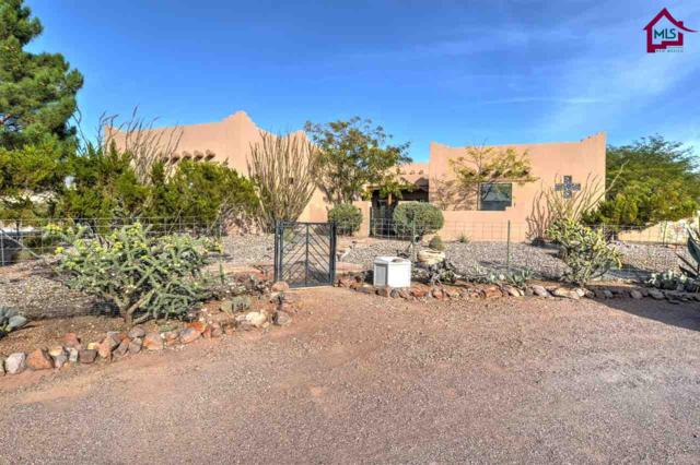 5051 Ruby Mine Road, Las Cruces, NM 88011 (MLS #1703443) :: Steinborn & Associates Real Estate