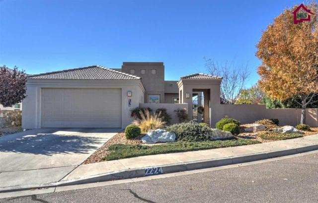 2224 Sedona Hills Parkway, Las Cruces, NM 88011 (MLS #1703461) :: Steinborn & Associates Real Estate
