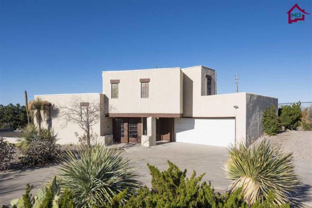 1589 Imperial Ridge, Las Cruces, NM 88011 (MLS #1703462) :: Steinborn & Associates Real Estate