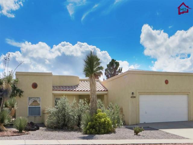 4530 Pinnacle View Drive, Las Cruces, NM 88011 (MLS #1703477) :: Steinborn & Associates Real Estate