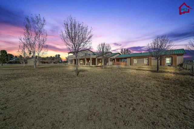 5607 Giron Rd, Las Cruces, NM 88007 (MLS #1703484) :: Steinborn & Associates Real Estate
