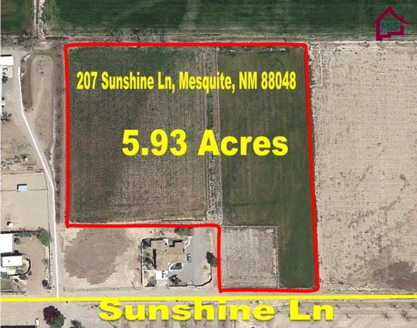 207 Sunshine Lane, Mesquite, NM 88048 (MLS #1703488) :: Steinborn & Associates Real Estate