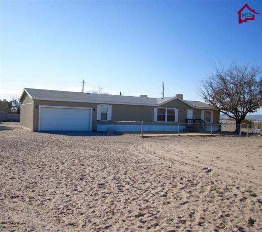 4221 N Charles St, Las Cruces, NM 88005 (MLS #1703510) :: Steinborn & Associates Real Estate