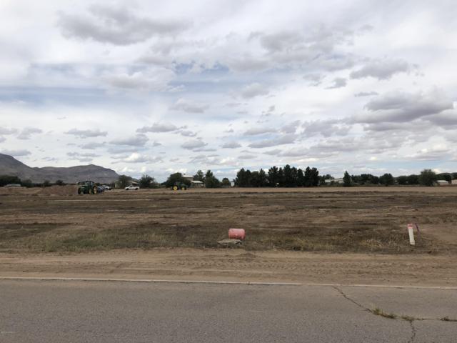 378 Barred Rock Court, Las Cruces, NM 88007 (MLS #1703521) :: Steinborn & Associates Real Estate