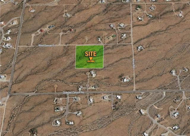 8920 Wind Dancer Trail, Las Cruces, NM 88011 (MLS #1800277) :: Steinborn & Associates Real Estate