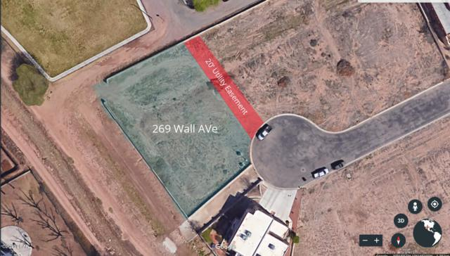 269 Wall Street, Mesilla Park, NM 88047 (MLS #1805065) :: Austin Tharp Team