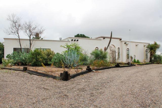 4400 E Winchester Road, Las Cruces, NM 88011 (MLS #1805097) :: Steinborn & Associates Real Estate