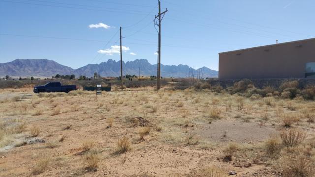 5874 Habanero, Las Cruces, NM 88012 (MLS #1805118) :: Steinborn & Associates Real Estate