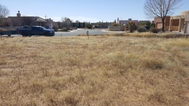 6443 Serrano, Las Cruces, NM 88012 (MLS #1805120) :: Steinborn & Associates Real Estate