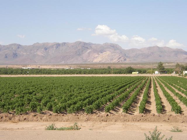 0 Highway 478, Mesquite, NM 88048 (MLS #1805127) :: Steinborn & Associates Real Estate