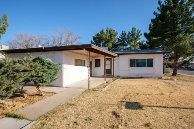 445 Phillips Drive Drive, Las Cruces, NM 88005 (MLS #1805150) :: Steinborn & Associates Real Estate