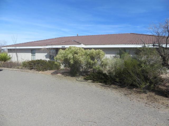 5800 Robledo Road, Las Cruces, NM 88012 (MLS #1805169) :: Steinborn & Associates Real Estate