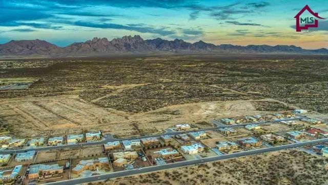 4511 Mesa Rico, Las Cruces, NM 88011 (MLS #1805182) :: Steinborn & Associates Real Estate