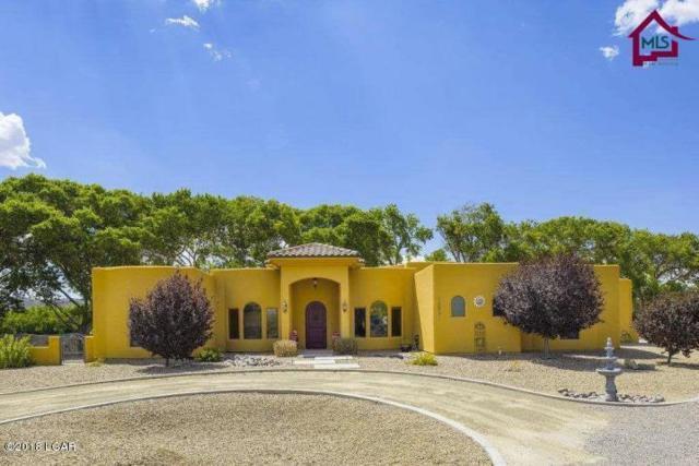 7395 La Fleche Place, Las Cruces, NM 88007 (MLS #1805240) :: Steinborn & Associates Real Estate