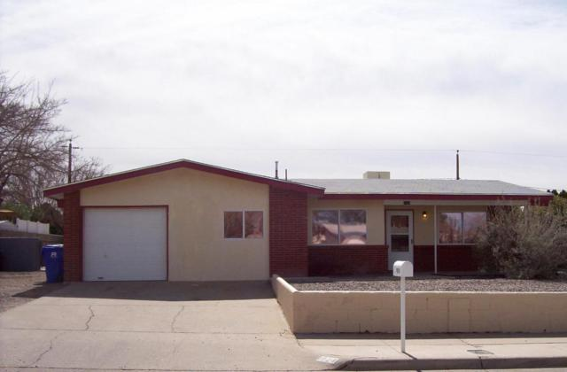 1924 Connie Lou Drive, Las Cruces, NM 88001 (MLS #1805253) :: Steinborn & Associates Real Estate