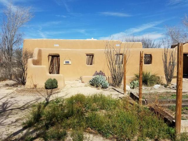 2155 Calle De Los Huertos, Las Cruces, NM 88005 (MLS #1805302) :: Steinborn & Associates Real Estate