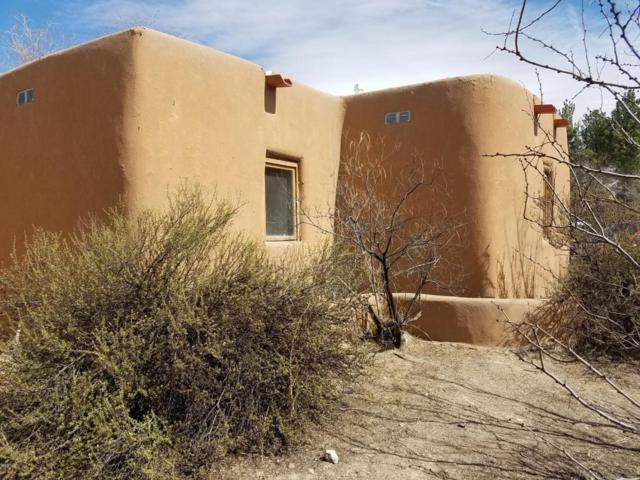 2155 Calle De Los Huertos, Las Cruces, NM 88005 (MLS #1805303) :: Steinborn & Associates Real Estate