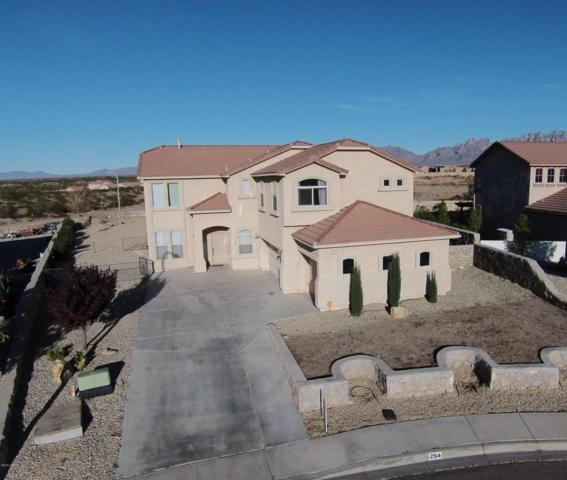 2514 Tuscan Hills, Las Cruces, NM 88011 (MLS #1805333) :: Steinborn & Associates Real Estate