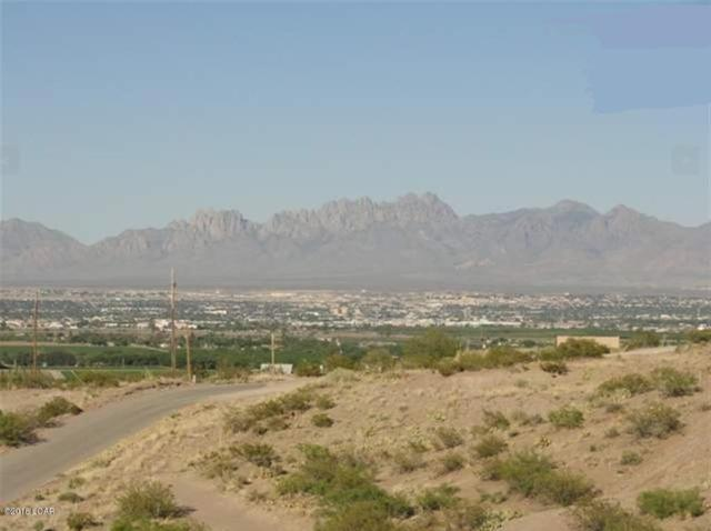 6058 Sunset View Place Lot 1D, Las Cruces, NM 88007 (MLS #1805342) :: Steinborn & Associates Real Estate