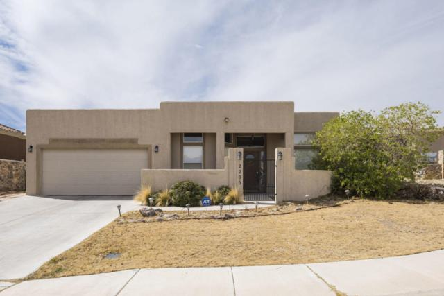 2205 Sun Chaser Place, Las Cruces, NM 88011 (MLS #1805345) :: Steinborn & Associates Real Estate
