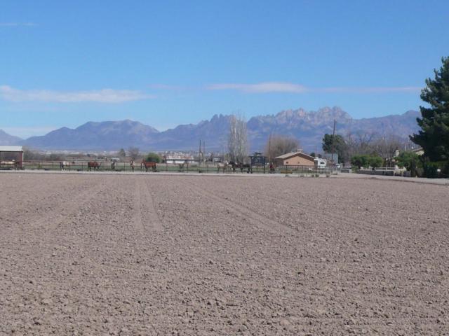 0000 Puesta Del Sol, Mesilla, NM 88046 (MLS #1805370) :: Steinborn & Associates Real Estate