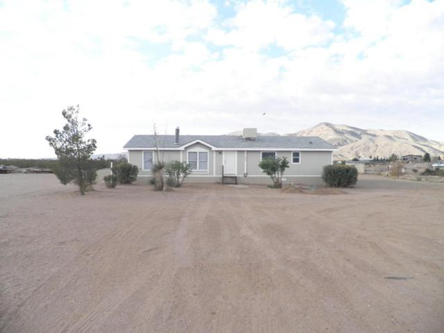 11835 Warrior Lane, Las Cruces, NM 88007 (MLS #1805382) :: Steinborn & Associates Real Estate