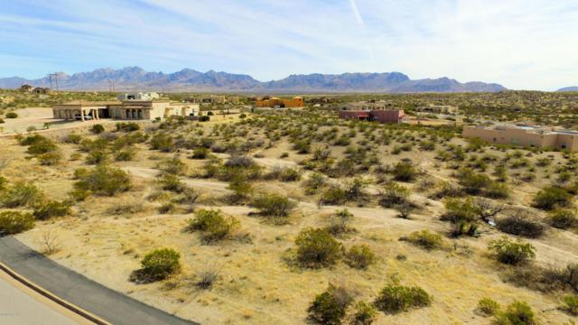 6045 Lazo Del Sur, Las Cruces, NM 88011 (MLS #1805393) :: Steinborn & Associates Real Estate