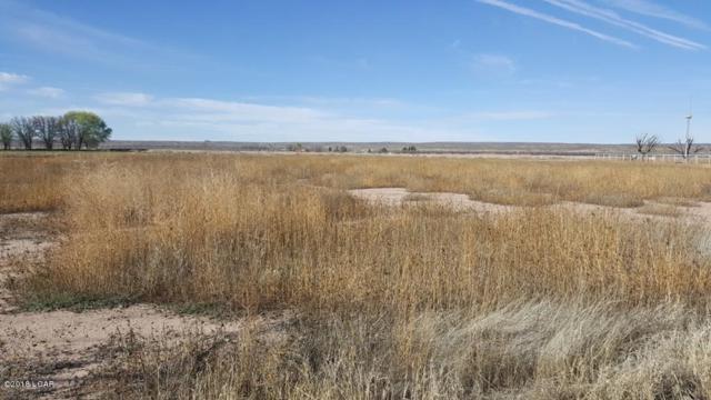 00 S Highway 28, San Miguel, NM 88058 (MLS #1805512) :: Steinborn & Associates Real Estate