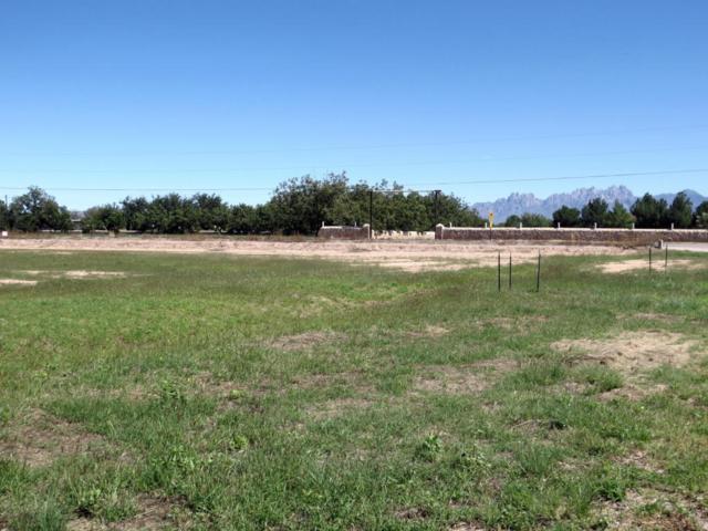 3402 Calle Bedado, Las Cruces, NM 88007 (MLS #1805528) :: Austin Tharp Team